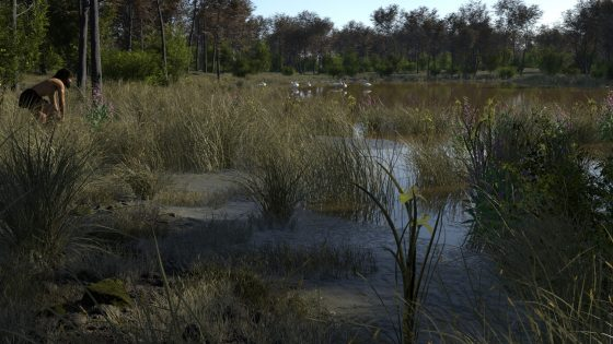 Carex Lake by Ulco Glimmerveen