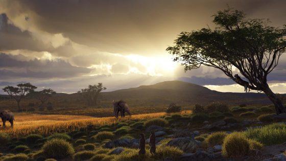 Serengeti by Alessandro Mastronardi