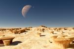 Mushroom Desert.png